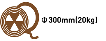 Φ300mm